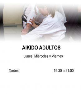 Aikido Audultos