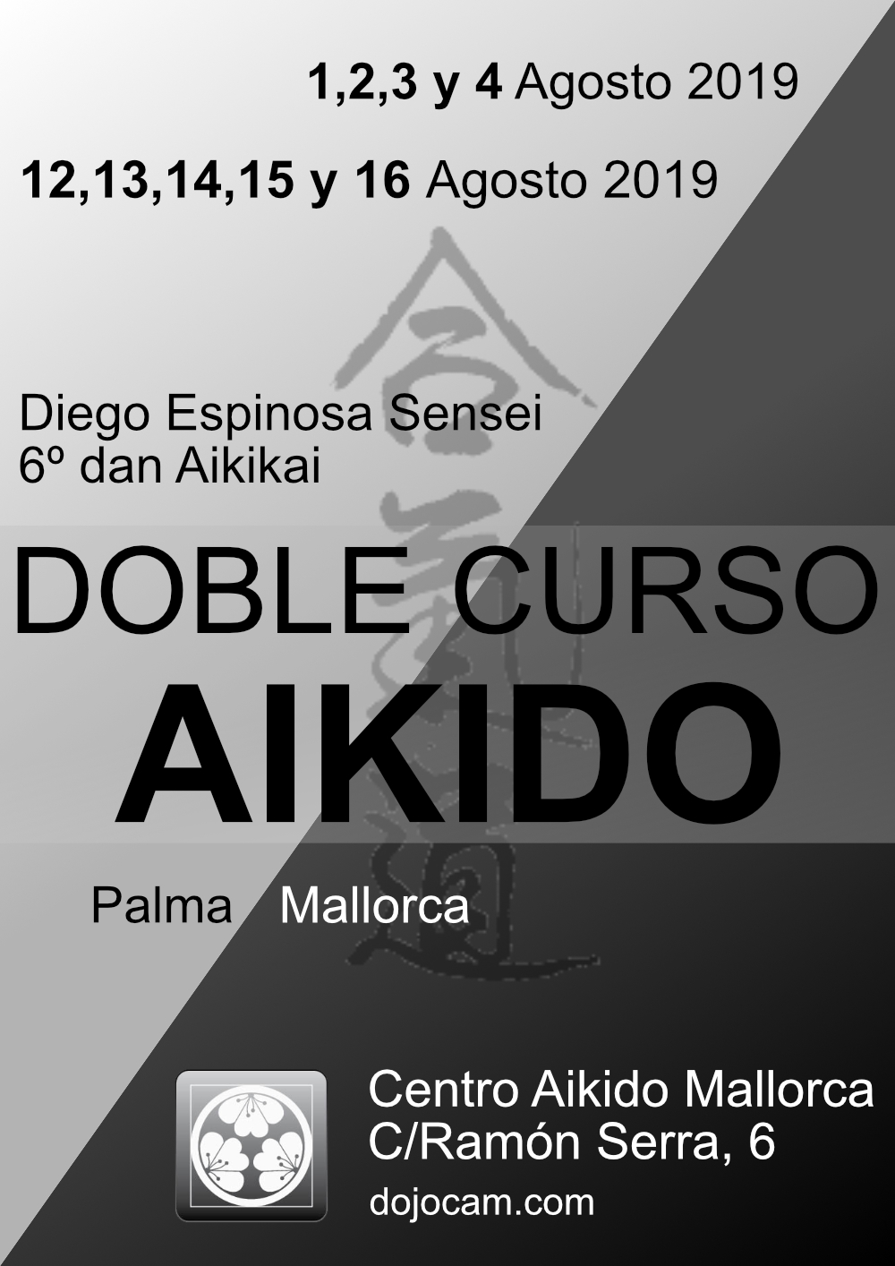 Doble curso Aikido Agosto 2019