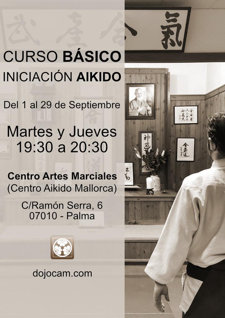 Curso Básico de Iniciación al Aikido